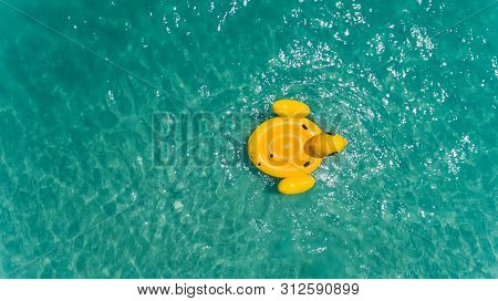 Top View From Sky Of Duck Swiming Lifebuoy.