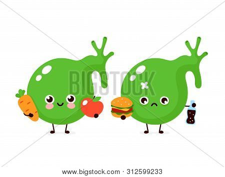 Cute Healthy Happy Gallbladder Organ With Vegetables And Sad With Burger Character. Vector Flat Cart