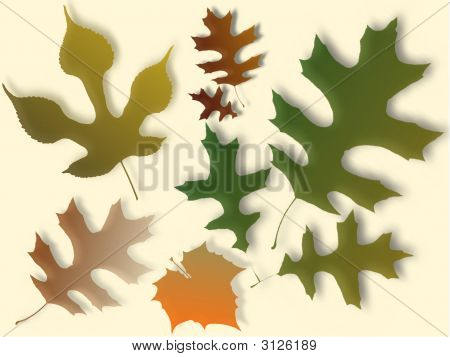 Autum Leaves Background