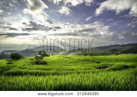 Terraces Rice Fields On Mountain In Thailand. Beautiful Nature Background.