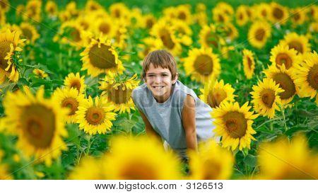 Teenager In A Sunflower Field