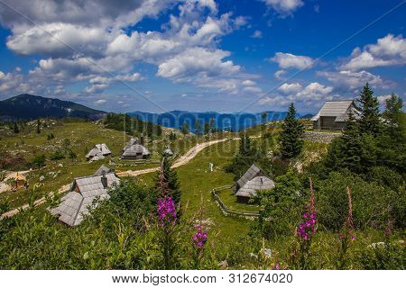 Summer View Big Pasture Plateau (velika Planina) With Flowers Is A Karstified Mountain Plateau In Th