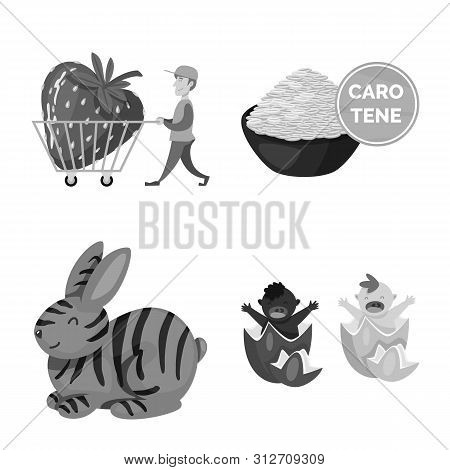 Isolated Object Of Transgenic And Organic Icon. Set Of Transgenic And Synthetic Vector Icon For Stoc