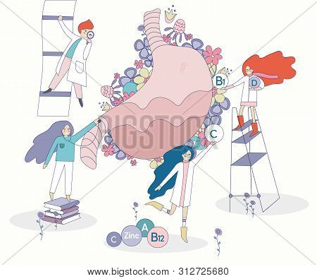 Healthy Stomack Vector With Flowers On The Background. Four Doctors And Nurses Looking For The Right