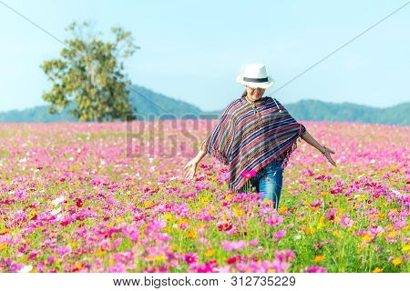 Traveler Asian Women Walking In The Flower Field And Hand Touch Cosmos Flower, Freedom And Relax In