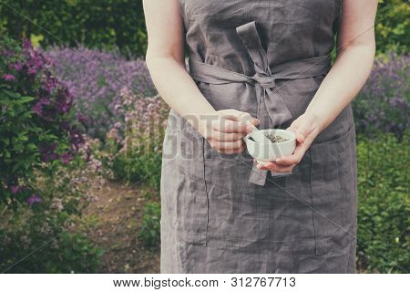 Woman Holding In Her Hands A Mortar Of Healing Herbs. Herbalist Collects Medicinal Plants In Garden.