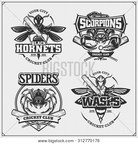 Set Of Cricket Badges, Labels And Design Elements. Sport Club Emblems With Scorpion, Wasp, Hornet An