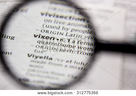 Word Or Phrase Vixen In A Dictionary