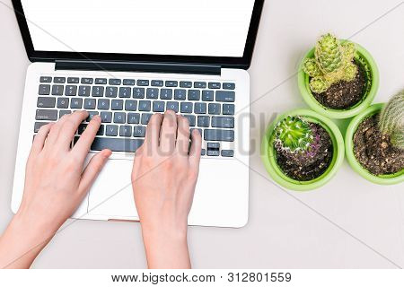 A Woman Works On A Modern Computer. Hands Of A Girl Typing On A Laptop Keyboard. Office Desk With A