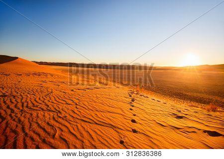 Stunning sunset over red sand dunes in Namib desert