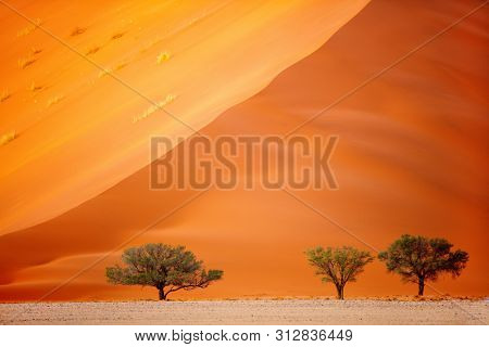 Close up of beautiful red sand dune in Sossusvlei in Namibia