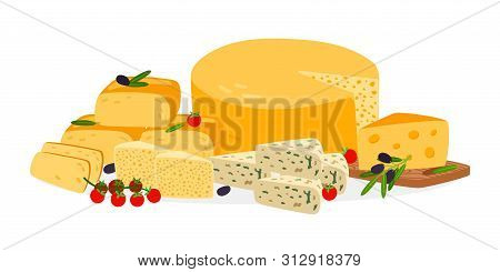Farm Cheese Vector. Different Cheese Types Vector Illustration