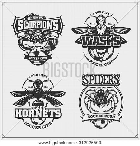 Set Of Vector Football And Soccer Badges, Labels And Design Elements. Sport Club Emblems With Scorpi