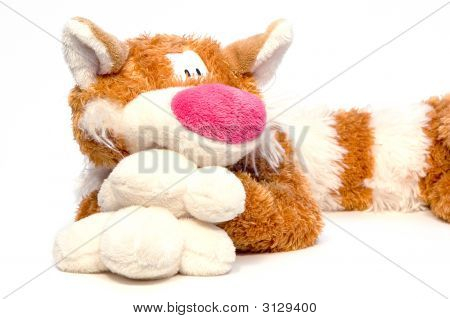 Big Soft Tabby Goggleeyed Red-Haired Cat - Toy Over White