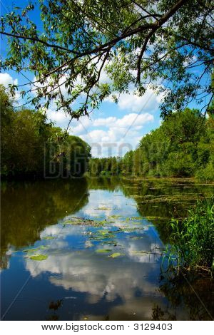Beautiful Summer Park, River, Reflection