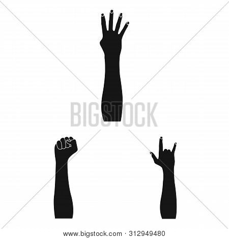 Isolated Object Of Animated And Thumb Icon. Set Of Animated And Gesture Bitmap Icon For Stock.