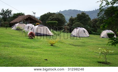 Camping In The Rwenzori Mountains