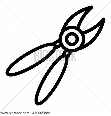 Secateurs Icon. Outline Secateurs Vector Icon For Web Design Isolated On White Background