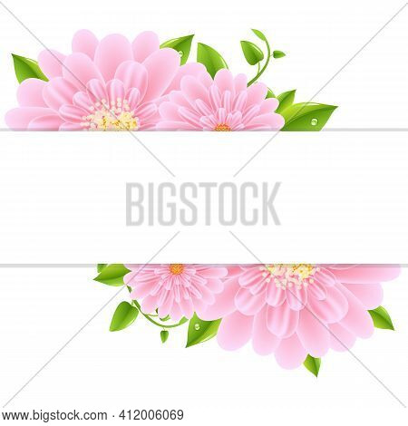 Paper With Pink Gerber And Leaves, Vector Illustration