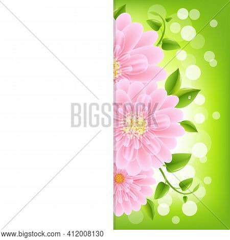 Paper With Pink Gerber And Bokeh, Vector Illustration