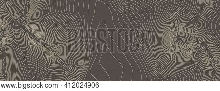 Contours Vector Topography. Geographic Mountain Topography Vector Illustration. Topographic Pattern