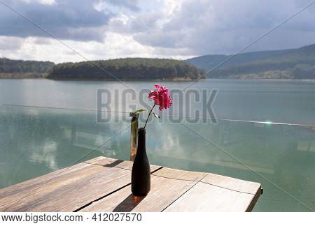 Amazing view of Tuyen Lam Lake, flower on the foreground. Dalat, Vietnam