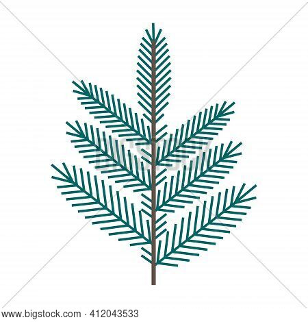 Simple Minimalistic Green Branch Of A Spruce With Needles. Floral Collection Of Elegant Plants For S