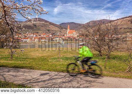 Cyclist On Bike Route Against Weissenkirchen Village During Spring Time In Wachau, Austria