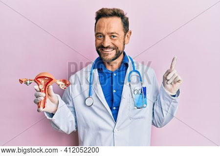 Middle age gynecologist man holding anatomical model of female genital organ smiling happy pointing with hand and finger to the side