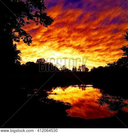Dramatically Pronounced Orange Sunset With Tree Silhouettes Against The Sky. Autumn Landscape