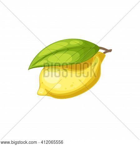 Whole Lemon Yellow Citrus Fruit With Green Leaf Isolated Icon. Vector Tropical Citron, Ripe Sour Fru