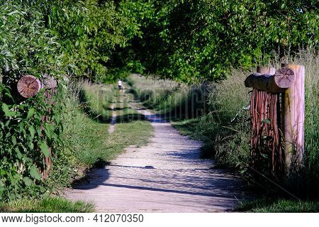 Beautiful Little Wooden Bridge And A  Pathway That Leads To The Woods