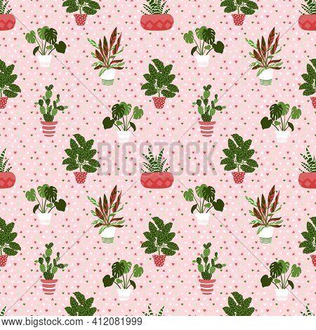 Vector Pattern From Houseplants In Pots. Cactus, Aloe, Monster, Calatea, Stromunt. Illustration Of D