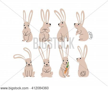 Cartoon Rabbit Drawing Element. Cute Element For Print And Design.