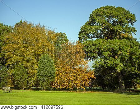 Trees With Beautiful Orange And Green Autumn Foliage In The Yorkshire Arboretum, North Yorkshire, En