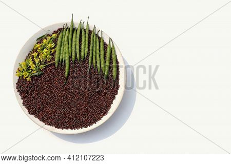 Black Mustard Seed In A Plate With Mustard Flower And Pods Isolated On White Background With Copy Sp