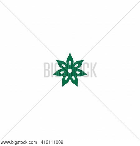 Green Anise Star Linear Icon. Vector Flat Illustration Isolated On White. Flavoring, Seasoning. Wint
