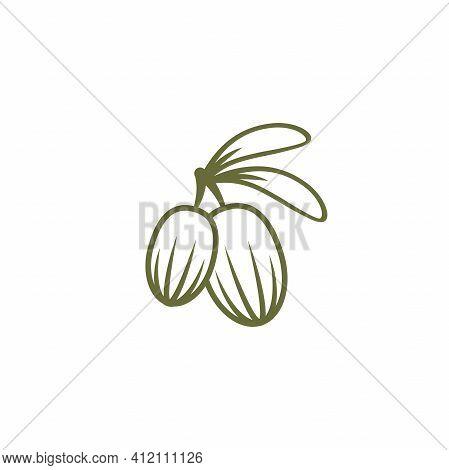 Shea Nut Green Icon. Vitellaria Beauty And Cosmetics Oil. Cosmetic Ingredient Carotene, Carotin. She