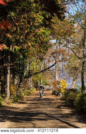 Gapyeong,south Korea-october 2020: Old Korean Asian Couple Riding Bicycle Alongt The Lake. Korean Gr