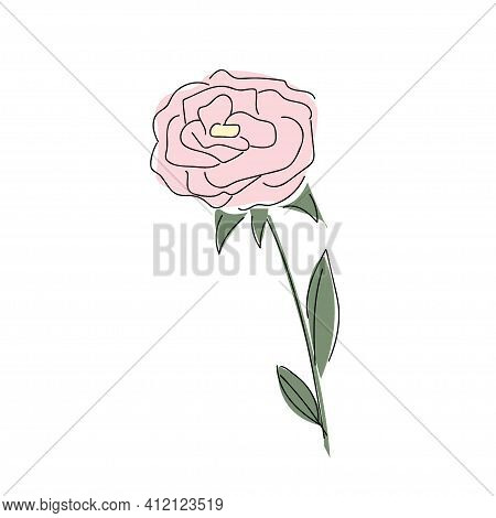 Abstract Minimalistic Pink Rose Drawn With A Black Sketch Line And Painted With Colored Spots In Whi