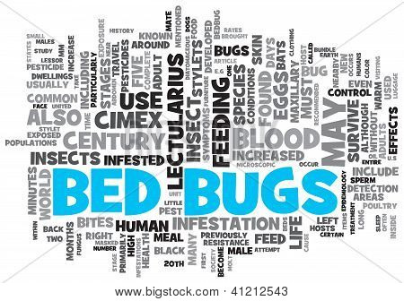 Bed Bugs Concept Design Word Cloud on White Background
