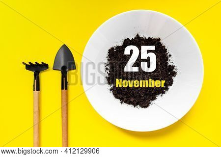 November 25th. Day 25 Of Month, Calendar Date. White Plate Of Soil With A Small Spatula And Rake On