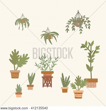 A Set Of Indoor Plants. Cartoon Flowers For An Apartment Or Greenhouse Drawn By Hand. Collection Of