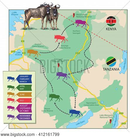 Vector Illustration Of Great Wildebeest Migration Shown On The Map. The Part Map Of Africa Is A Sche