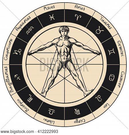 Vector Circle Of Zodiac Signs With Hand-drawn Human Figure Like Vitruvian Man By Leonardo Da Vinci.
