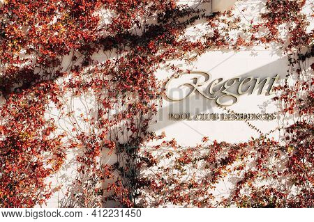 A Wall With Branches With Red Leaves Around The Sign Regent Pool Club Residences In Porto Montenegro