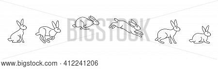 A Set Of Rabbit Jump Phases. The Hare Sits, Prepares To Jump, Jumps, Lands. Black Outline On A White