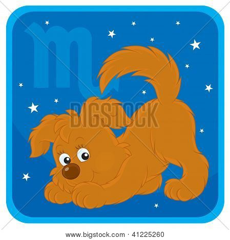 Zodiac sign of Scorpio as a funny pup in a pose of an attacking scorpion, vector illustration poster