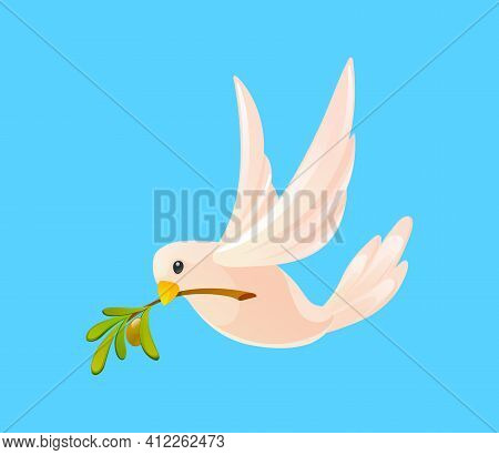Dove With An Olive Branch In Its Beak Flying In Sky On Blue Background. White Pigeon Isolated. Symbo