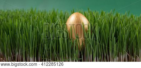 Easter Egg Hunt. Easter Holiday. Looking For Easter Eggs In The Grass. Golden Painted Egg In Spring